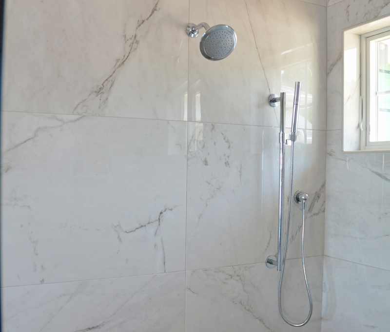 shower with dual showerheads